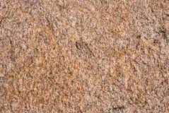 Naturalny granitu kamień z unikalnym wzorem włączenia kwarcowe żyły fotografia royalty free