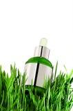 Naturalny istotny olej w butelce z świeżą zielenią obrazy stock