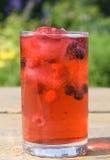 naturalny jagodowy sok Zdjęcie Royalty Free