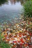 Naturalny koloru dywan Fotografia Royalty Free