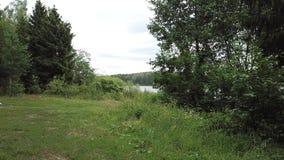 Naturalny krajobraz magiczny jeziorny Medesno zdjęcie wideo