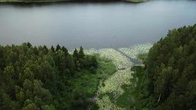 Naturalny krajobraz wijący rzeczny Ovsyanka zbiory wideo