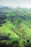 Naturalny krajobrazowy widok kukurydzany pole i ryżu pole Fotografia Royalty Free