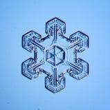 Naturalny krystaliczny płatek śniegu makro- Obraz Royalty Free