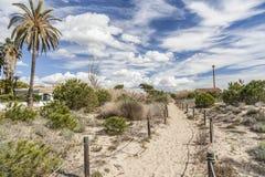 Naturalny ochraniający teren Els Muntanyans w Torredembarra, Costa Dor obrazy royalty free