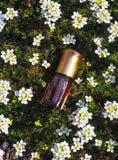 Naturalny olej dla relaksu i błogości Tradycyjny języka arabskiego kadzidło Obraz Stock