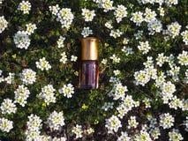 Naturalny olej dla relaksu i błogości Tradycyjny języka arabskiego kadzidło Fotografia Stock