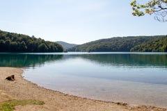 Naturalny park Plitvice, Chorwacja Obraz Royalty Free