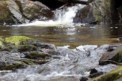 Naturalny piękno halna rzeka Fotografia Royalty Free