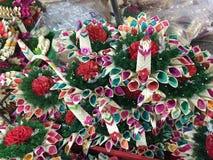 Naturalny piękno kwiat w Bangkok Fotografia Royalty Free