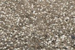 Naturalny piaska i skorup tło Fotografia Stock