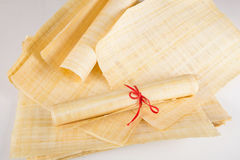 Naturalny pusty Egipski papirus Zdjęcie Royalty Free