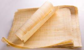 Naturalny pusty Egipski papirus Fotografia Royalty Free