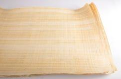 Naturalny pusty Egipski papirus Fotografia Stock