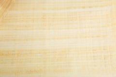 Naturalny pusty Egipski papirus Obraz Stock