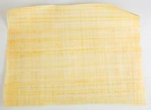 Naturalny pusty Egipski papirus Obrazy Stock