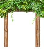 Naturalny spoczynkowy pawilon fotografia stock