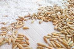 Naturalny surowy żyto groszkuje z białej mąki tekstury tłem fotografia royalty free