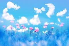 naturalny tła lato Piękni żółci dandelions w świetle słonecznym Artystyczny makro- wizerunek wolna przestrzeń obraz royalty free