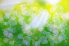 Naturalny tła zamazywać, słońca promienie i Zdjęcie Royalty Free