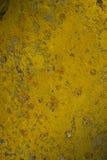 Naturalny tło. żółty mech Zdjęcia Royalty Free