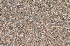 Naturalny tło - morze skorupy Obraz Stock