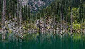 Naturalny widok Południowy Kazachstan W shan górach - Alpejski Kaindy jezioro Także Znać Jako Brzoza jezioro Lub Podwodny ForestT obrazy stock