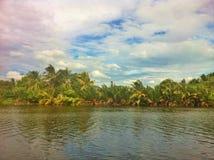 Naturalny wzdłuż rzeki Obrazy Royalty Free