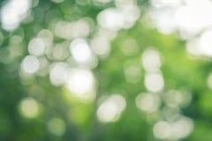 Naturalny Zielony Abstrakcjonistyczny Bokeh tło Obraz Royalty Free