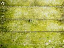 naturalny zielony drewniany tło Fotografia Royalty Free