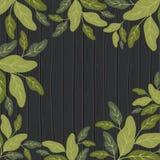 Naturalnych liści deseniowy tło Zdjęcie Stock