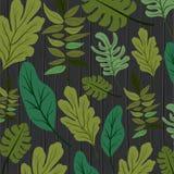 Naturalnych liści deseniowy tło Obrazy Royalty Free