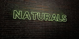 NATURALS -Realistic Neon Sign on Brick Wall background - 3D rendered royalty free stock image Stock Photo