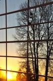 Naturansicht reflektieren sich vom Fenster Stockfotografie