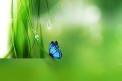 Naturbakgrund
