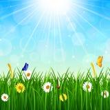 Naturbakgrund med grönt gräs, blå himmel och den ljusa solen Stock Illustrationer