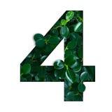 Naturbegreppsalfabet av gräsplansidor i nummer fyra Arkivfoto
