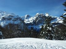 Naturberg Pyrenees som countryskiing Royaltyfri Foto