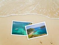 Naturbild auf Sandhintergrund Lizenzfreies Stockbild