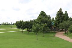 Naturbild för Sugar Land Memorial Park och den Brazos River korridoren arkivbilder