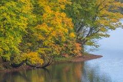 Nature湖在秋天 免版税库存照片