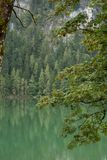 Nature湖射击了在Gleinkersee在奥地利 免版税库存图片