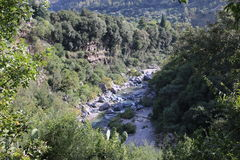 Nature étonnante de la Sicile Images libres de droits
