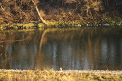 Nature 075. A view over a river Stock Image