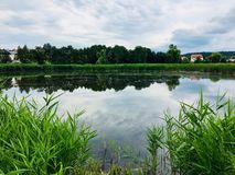Nature湖 免版税库存图片