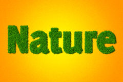 Nature Stock Images