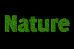 Nature image stock