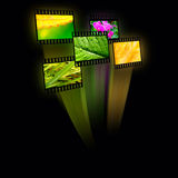 Nature. Film frames with color pictures (nature) on black background Stock Photos