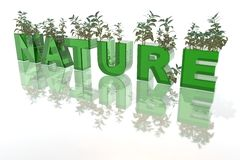 Nature Stock Photography