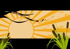 Nature. An illustration of the sun and its rays, with stalks of wheat and some tree branches as decoration vector illustration